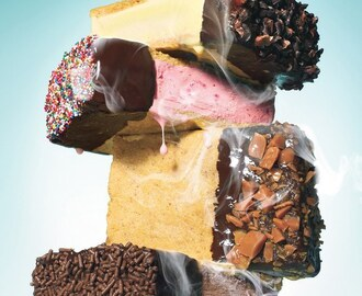 Chocolate-Dipped Ice Cream Sandwiches