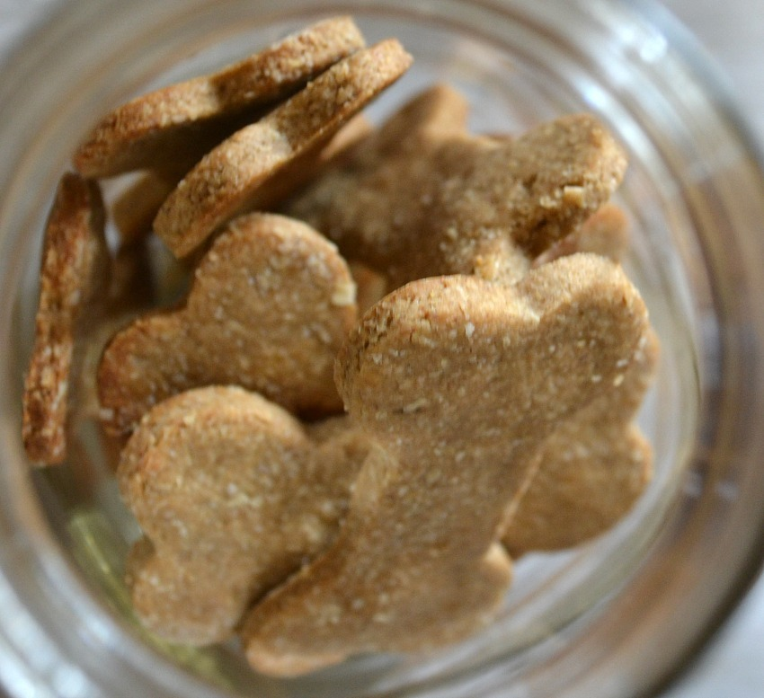 Homemade Peanut Butter Banana Dog Treats