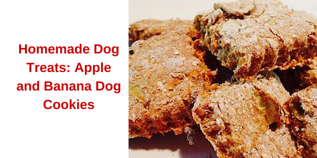 Homemade Dog Treats: Apple and Banana Dog Cookies