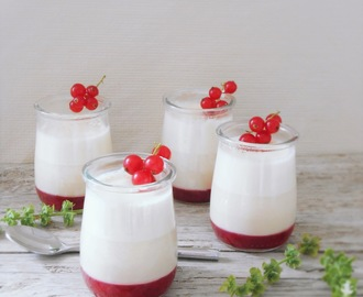 Panna Cotta con Coulis de Grosellas.