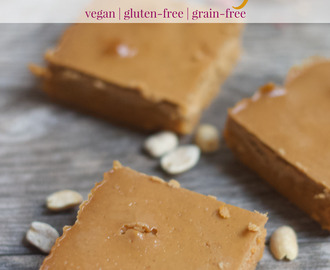 Peanut Butter & Jelly Protein Fudge [vegan + gluten-free]