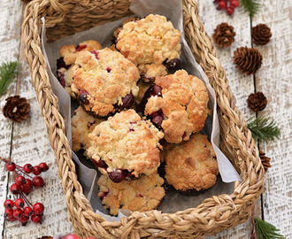 Cranberry Buttermilk Streusel Crumble Muffins - HIGHLY RECOMMENDED especially for Christmas!!!