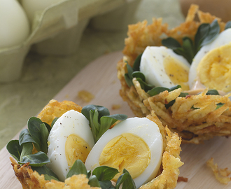 Explore Spinach Egg, Bird Nests, and more!