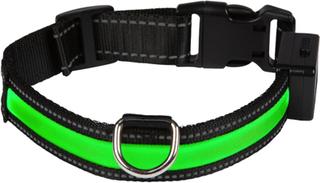 Eyenimal LED lysande halsband - grönt - Stl. L: 50 - 65 cm halsomfång, B 25 mm
