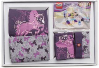Giftbox - Lego Friends