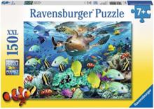 150XXL - Underwater Paradise