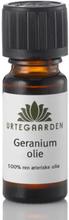 Urtegaarden Geraniumolie Æterisk olie (10 ml)