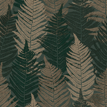 Fern Forest - 1164