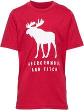 Tech Logo T-shirts Short-sleeved Rød Abercrombie & Fitch