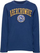 Tech Logo Sweat-shirt Genser Blå Abercrombie & Fitch