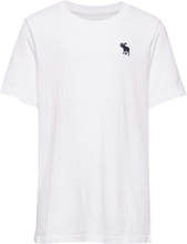 Basic Crew T-shirts Short-sleeved Hvit Abercrombie & Fitch