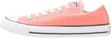 Converse CHUCK TAYLOR ALL STAR SEASONAL Sneakers s