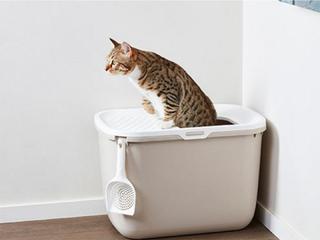 Kattlådehus Hop in