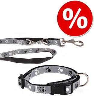 Trixie sett: Halsbånd Poter Silver Reflect + Hundebånd - Halsbånd Str. M-L + bånd 200 cm / 20 mm