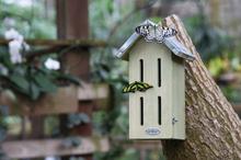 Esschert Design sommerfuglhus VC3