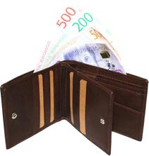 Plånbok SYDNEY DOLLAR Brun
