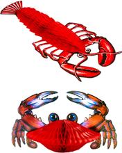 Hummer og Krabbe - 2 stk Honeycomb