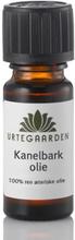 Kanelbarkolie ægte æterisk olie 10 ml.