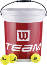 Team W Trainer 72-pack Hink Special Edition