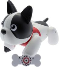 Hundrobot Duke