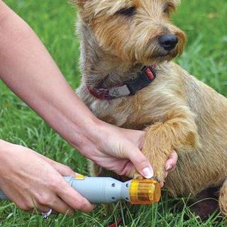 Elektrisk negleklipper til hunde og katte (og andre dyr)