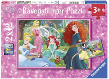 In the World of Disney Princess Puzzle 2x12st.