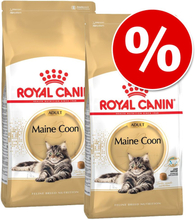Sparpaket 2 x Royal Canin Breed - Siamese Adult (2 x 10 kg)