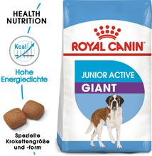 Royal Canin Giant Junior Active - Sparpaket: 2 x 15 kg