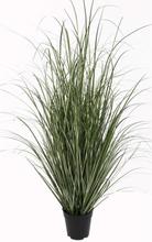 FINTINNE Dekorationsgräs i kruka H122 cm