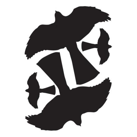 Fågelskuggor: SILUETT