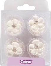 Sukkerblomster, hvide vilde roser