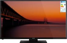 "TV LED 50"" Smart/Wifi - Champion"