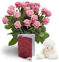 Rosa fryd gavesett