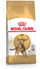 Royal Canin Bengal Adult - 10 kg
