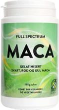 MSM NORGE-Full Spectrum Maca Pulver 180G-Greens