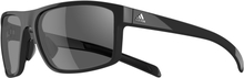 Adidas Whipstart Glasögon Svart/Grå