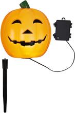 Halloweenpumpa Utomhusdekoration
