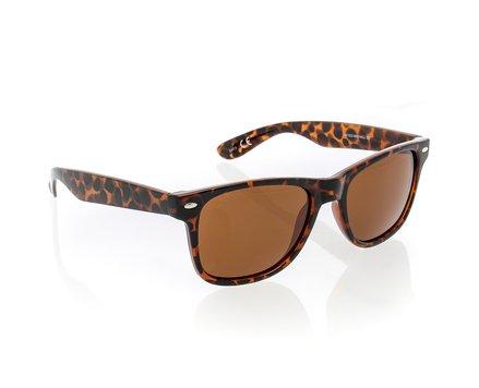 Hill Sunglasses