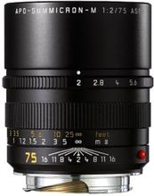Leica APO-Summicron-M 75 mm f/2,0 ASPH