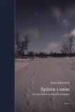 Spåren i snön : att vara kyrka i norrländska glesb
