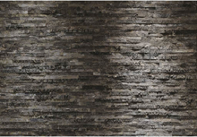 Komar Fototapet Birkenrinde 368x254 cm 8-700