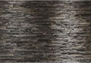 Komar vægudsmykning Birkenrinde 368 x 254 cm 8-700