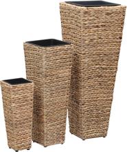vidaXL Odlingslådor 3 st vattenhyacint brun