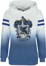 Harry Potter - Ravenclaw -Hettegenser - flerfarget