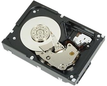 "Dell - Hårddisk - 1 TB - inbyggd - 3.5"" - SATA 6Gb/s - 7200 rpm - för PowerEdge T130, T30, T330, T430; PowerEdge R230, R240, R330, R430, R7415, T140,"