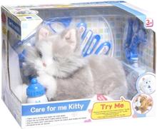 Övrigt lek Katt hos veterinär med tillbehör - Grå Katt