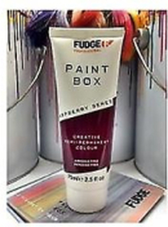 Fudge Fudge PaintBox hallon Beret