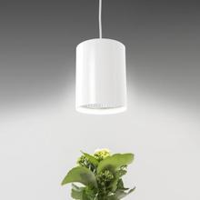AIRAM Flora LED Kasvilamppu E27 10W840 VI
