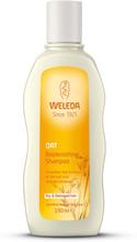 Oat Replenishing Shampoo, 190 ml