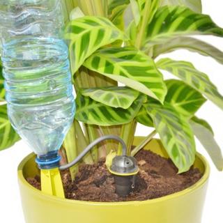 Självbevattning för PET-flaska